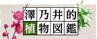 澤乃井的植物図鑑