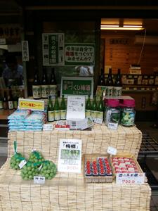 青うめ収穫祭開催中!