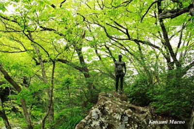 御岳渓谷の新緑と花を撮るお散歩 楽習会