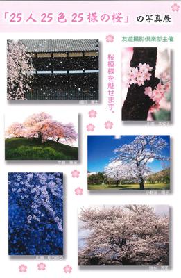 澤乃井ギャラリー「25人25色25様の桜」