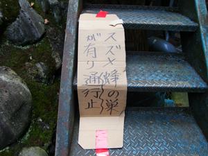 澤乃井 スズメバチ駆除