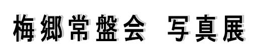 g_logo_tokiwakai